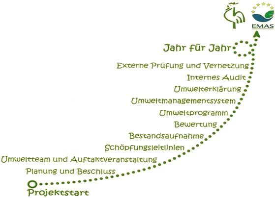 Projektplan Grüner Gockel